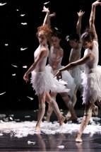 Neuigkeiten vom Ballett Pforzheim